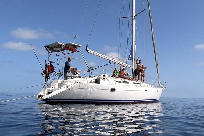Private full day sailing trips