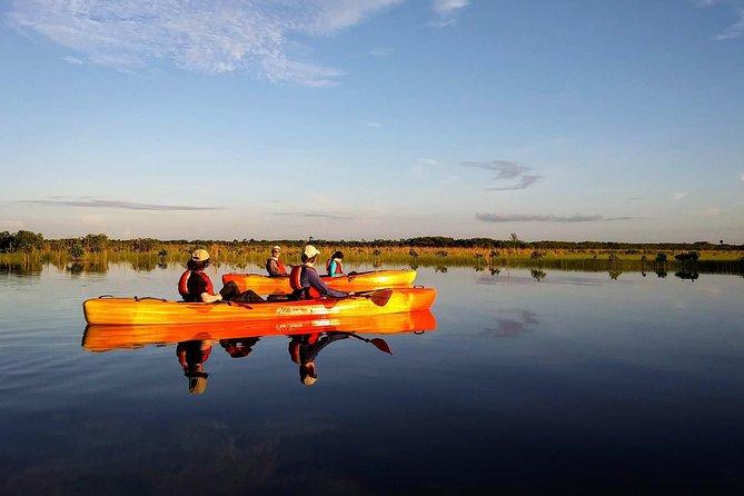 Kayak the Everglades Forest and Marsh Prairies