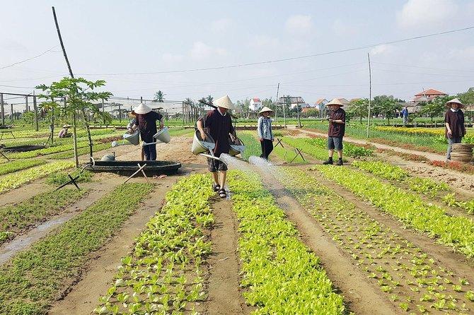 Tra Que Organic Vegetable Village - Farming & Cooking Experiences