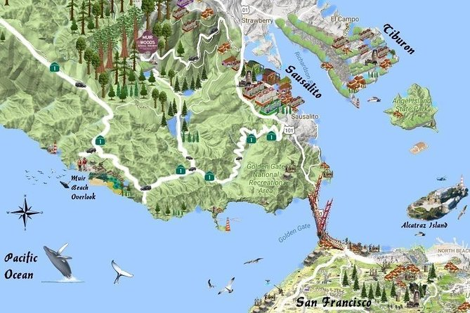 Best San Francisco, Muir Woods & Sausalito Private Combo Tour