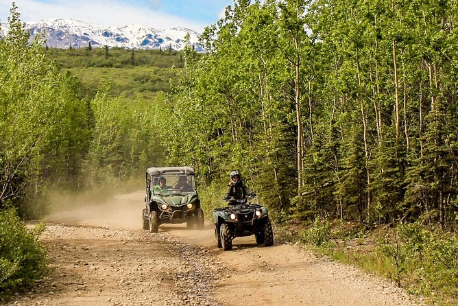2.5-Hour Denali Wilderness ATV Adventure Tour