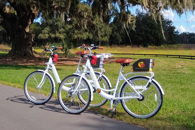 Village Bicycle Rental Free Delivery in The Villages Florida Deluxe Bicycles