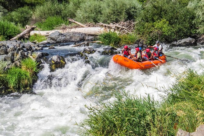 Nugget Falls class IV Half-Day Rafting on The Rogue River