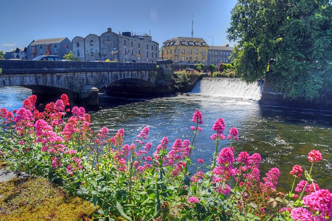 Two Hour Walking Tour of Galway City
