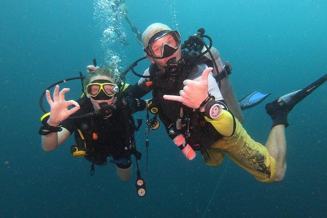 PADI Discover Scuba Dive in Koh Phangan (Beginners)