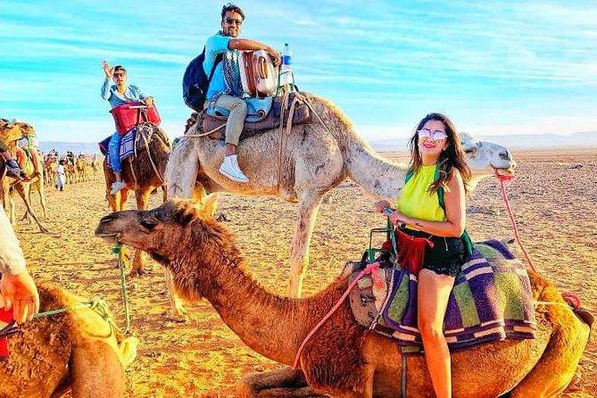 Desert Agafay and Atlas Mountains & Villages & Camel Ride Marrakech Day Trip