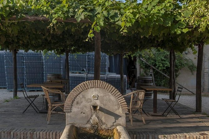 Cooking Class and Wine Tasting at a Rome Countryside Castle Cellars from Rome