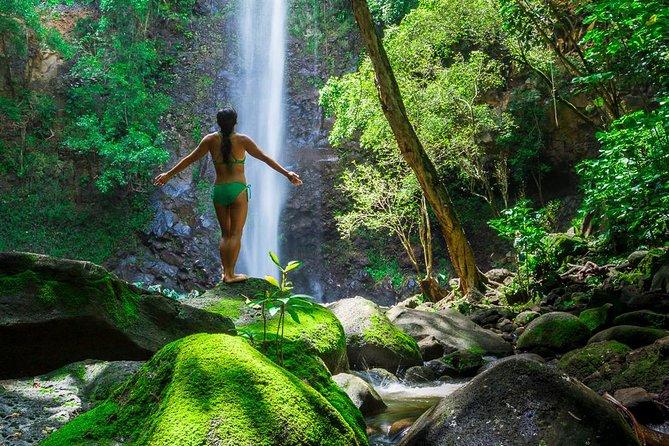 Wailua River Kayak and Sacred Fall Hike Adventure