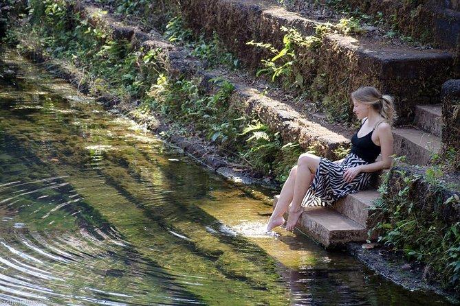 Usgalimal rock carvings, Netravali bubbling lake & Spice farm tour