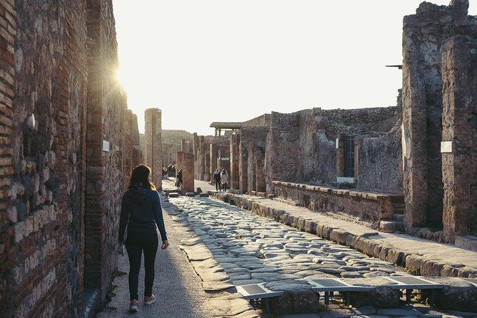 Skip the Line Ticket: Pompeii Admission