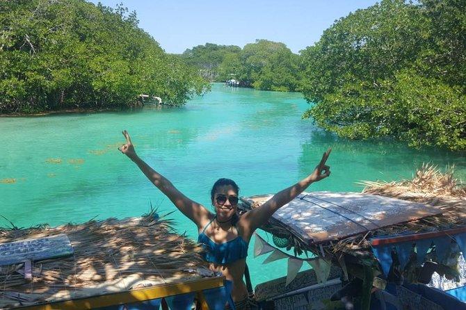 East End Tour (Mangroves, Punta Gorda, Port Royal) with Snorkeling Option