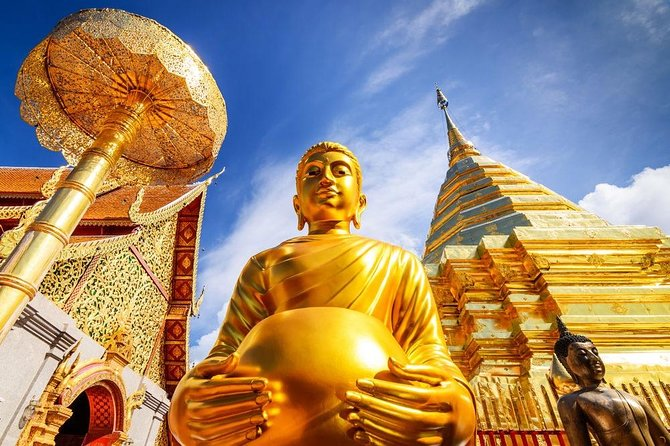 The Best City Tour View Points Wat Doi Suthep, Wat Chedi Luang and Wat Pha Lat