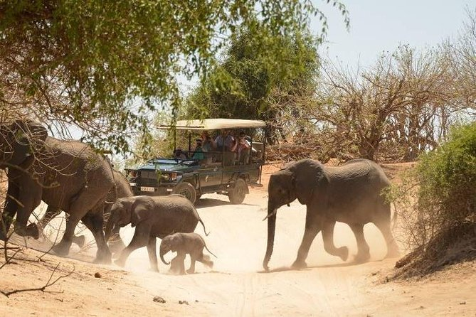 2 Days Hwange National Park from Victoria Falls