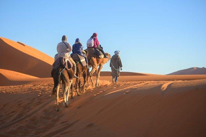 3-Day Desert Tour to Marrakech via Merouga-Erg Chebbi from Fez