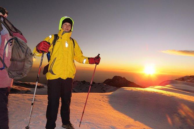 8 Days Lemosho Route Kilimanjaro Hiking | Climbing with Africa Natural Tour Ltd