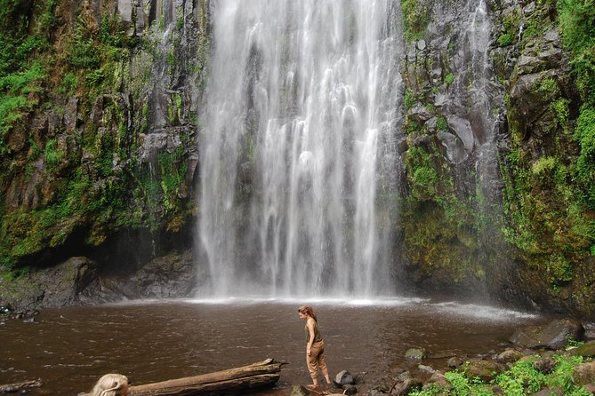 Materuni Waterfalls & Chaga Lifestyle Tour Moshi- Day Trip