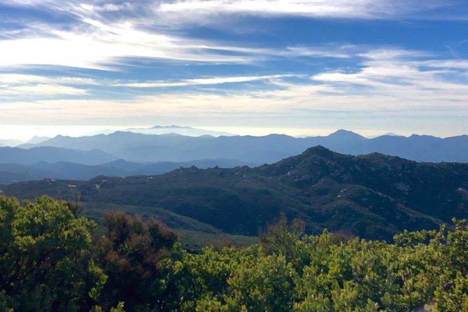 San Diego 4x4: Mountain Forest
