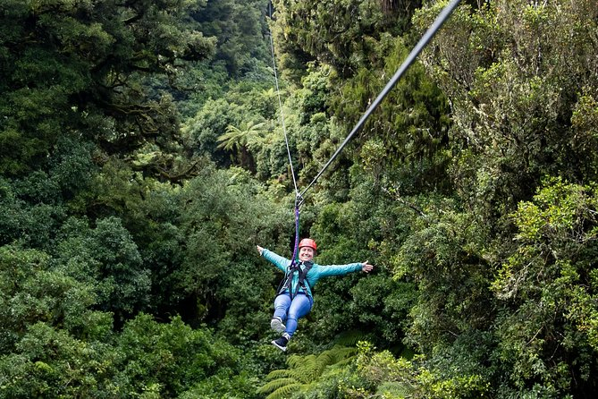 Ziplining Forest Adventure - The Original Canopy Tour Rotorua