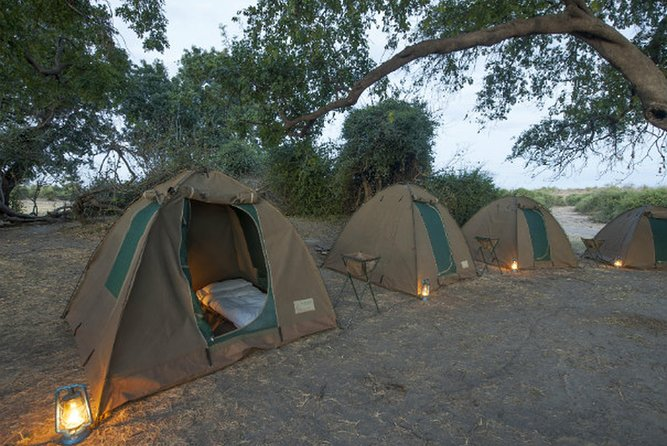 2Days 2 Nights camping safari in Chobe national park,Botswana