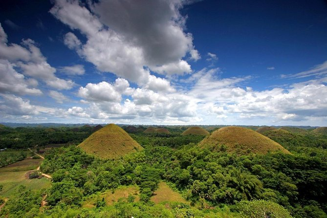Bohol Tour Package with Ferry Ticket From Cebu