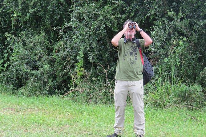 Bird Watching Experience