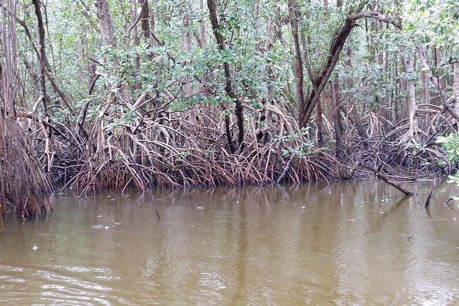 Laguna Limon Private Experience