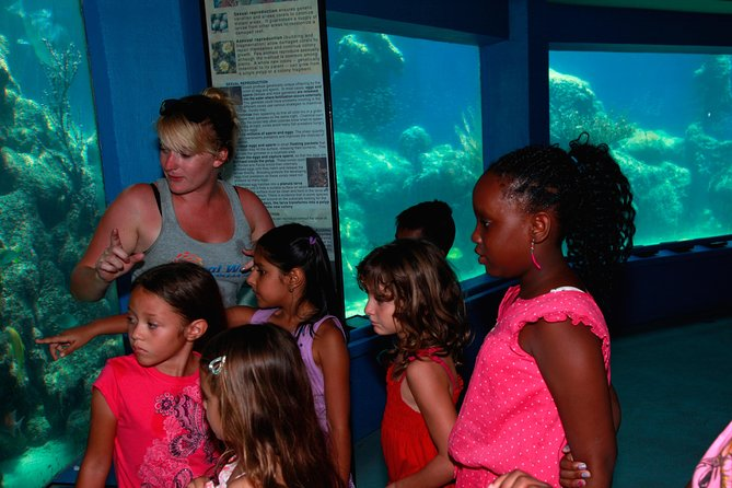 Coral World Guided Tour