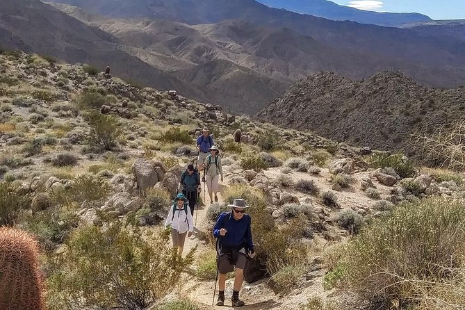 Palm Springs Best Views Half Day Hike with Murray Hill Summit
