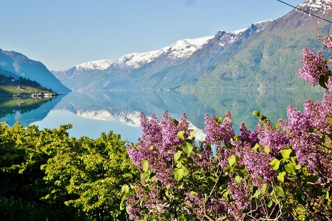 AMAZING HARDANGER FJORD: Private guided round trip from Bergen, 10 hours