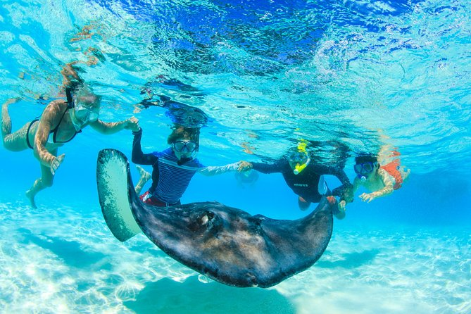 Private Stingray City and Snorkeling Half Day Charter for 12 Guests