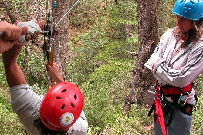 Canopy in Bariloche