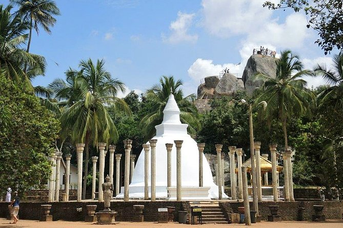 Day-trip from Anuradhapura to Wilpattu NP & Mihintale - Safari & Highlights Tour