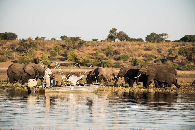 Namibia, Botswana and Zimbabwe Ultimate Safari Tour