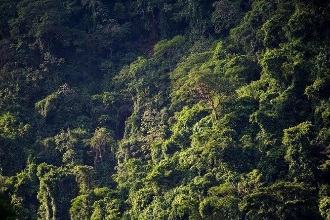 El Chocoyero El Brujo Nature Reserve Hike from Managua