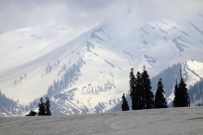 Srinagar to Gulmarg Full Day Excursion