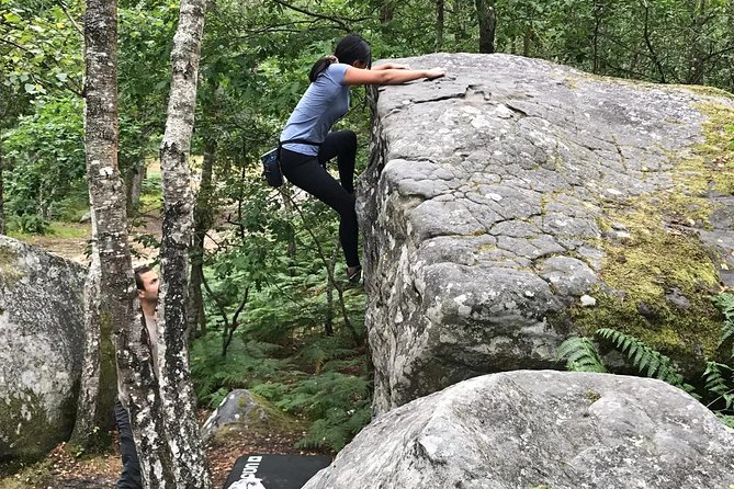 Half-Day Bouldering in Fontainebleau