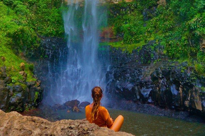 Private Tour - Rainforest & Waterfalls Extravaganza