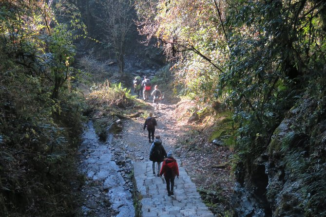 9 Days Trekking to Ghorepani Poonhill with Airport Pick Up