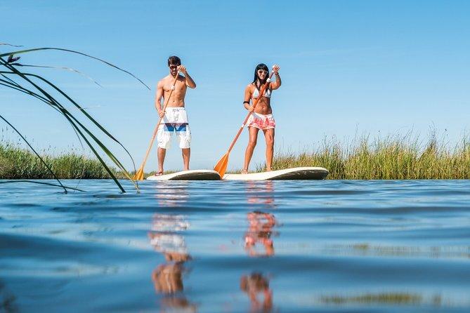 4-hour Paddleboard or Kayak Rental in Orlando