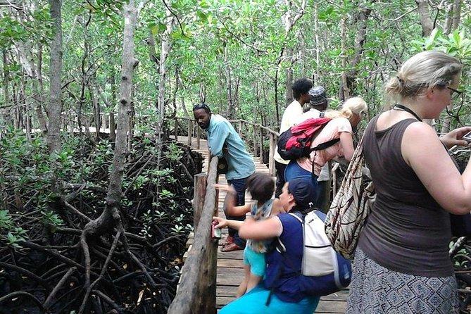 Jozani Forest and Village Tour in Zanzibar