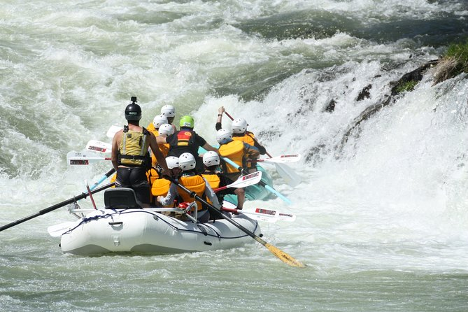 Half Day Rogue River White Water (Class I- IV)