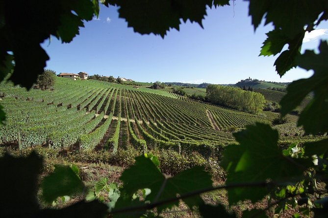 The prestigious world of Barolo with Sommelier