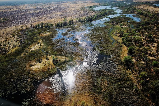 Full Day Okavango Boat Safari