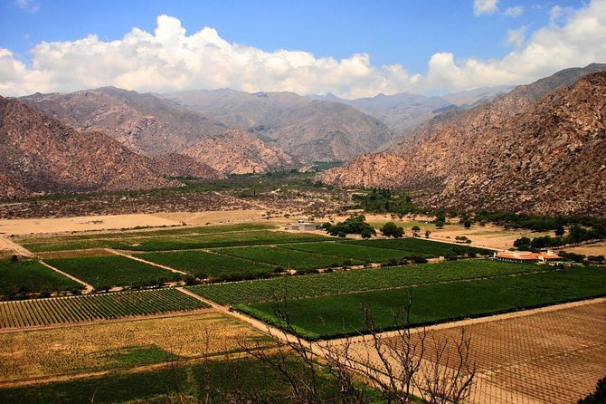 Full Day Excursion to Cafayate from Salta
