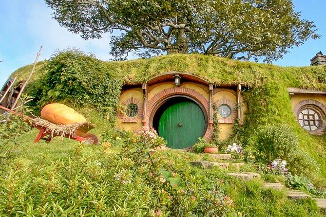 Auckland Shore Excursion: Small-Group Hobbiton Movie Set Tour