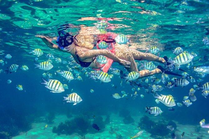 Privilege Experience Isla Mujeres Tour