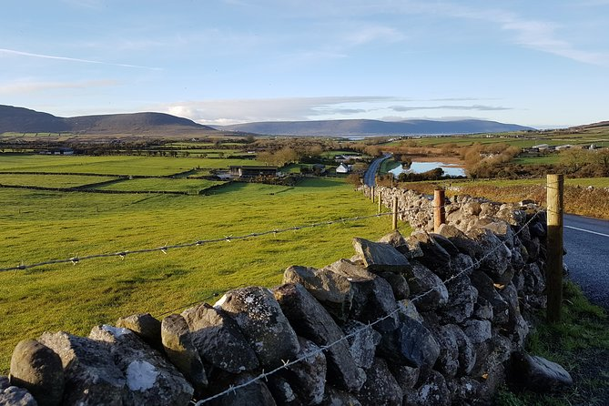 From Ennis: Guided tour of Cliffs of Moher and The Burren
