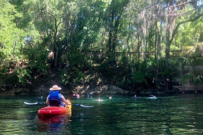 Wekiva River Guided Kayak Tour