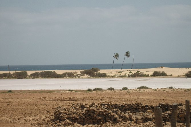 Boa Vista Private Tour from Curral Velho to Ervatao
