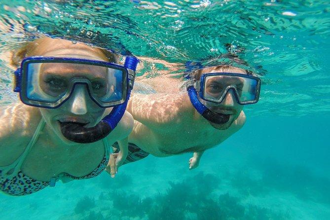St. John Half Day Two Stop Snorkel Excursion by Catamaran w/ Open Bar - Westin